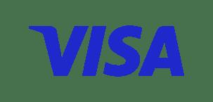 Visa Logo w Border
